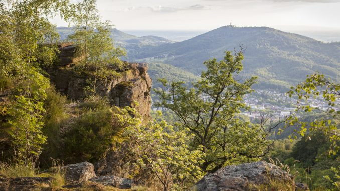 Blick vom Battert zum Fremersberg